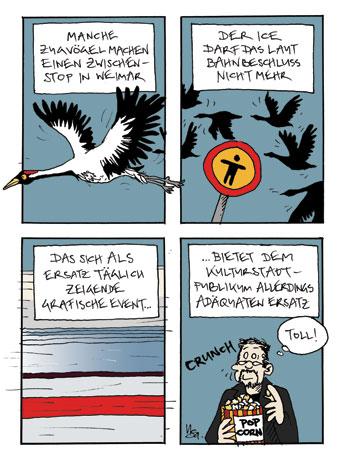 Flausen: Zugvögel